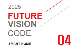 2025 Future Vision Code_MORE THAN MINIMAL